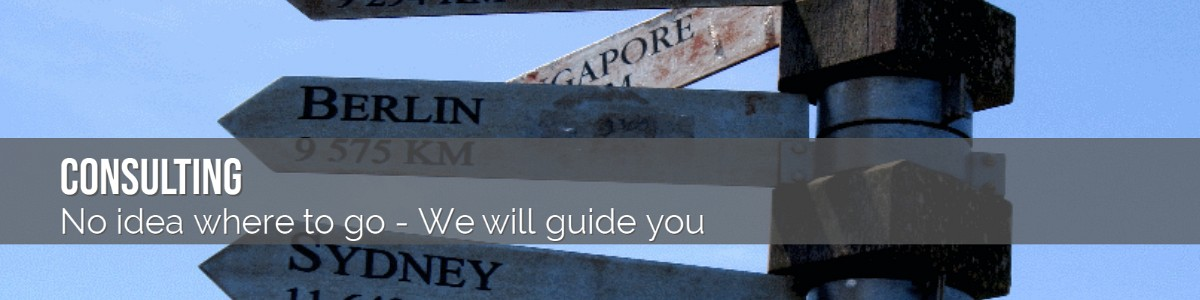 Xdm Consulting No idea where to go We will guide you